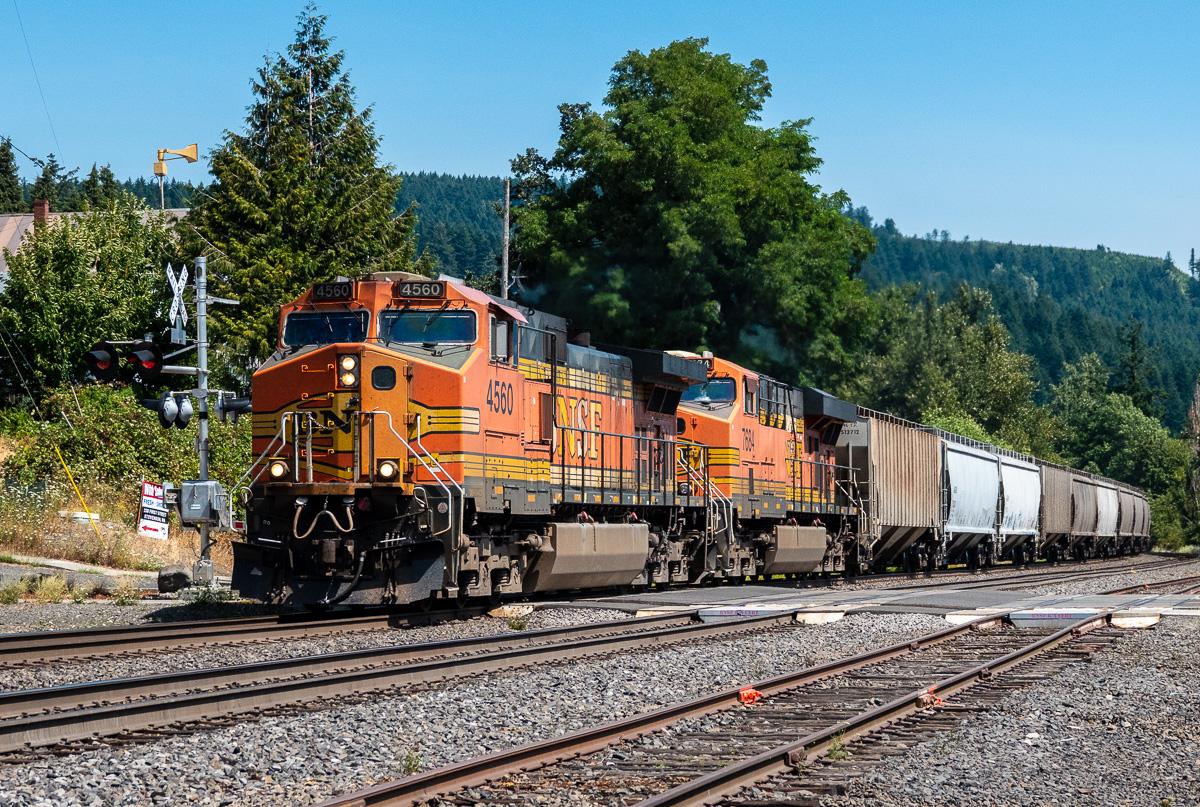 20180804_Columbia Gorge Trip__RXX2701