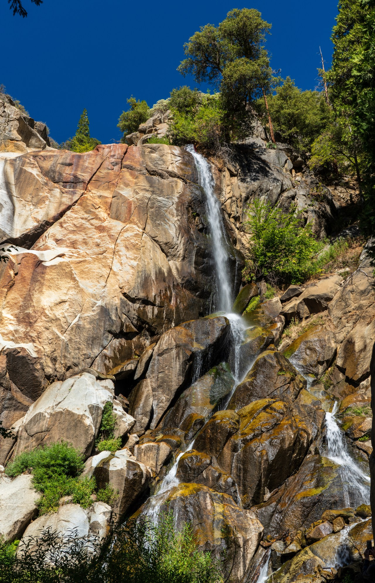 Grizzly Falls; Kings Canyon National Park