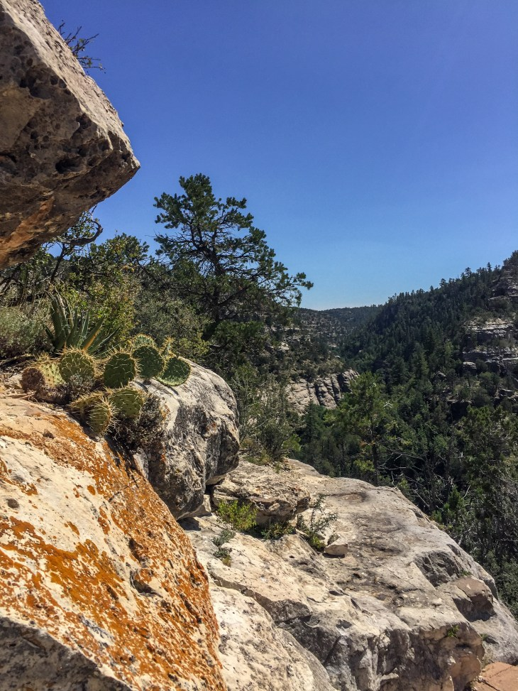 Cliffs at Walnut Canyon National Monument. Photo credit: Carla