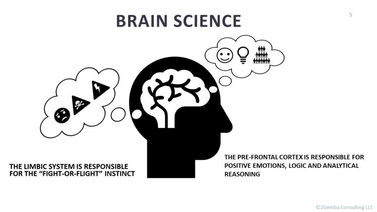 brain science of limbic system versus prefrontal cortex