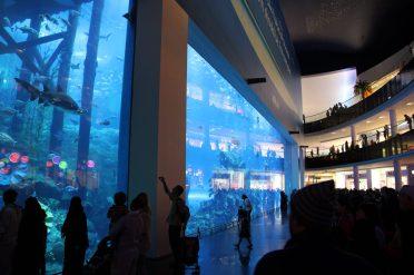 Akvariet i Dubai Mall