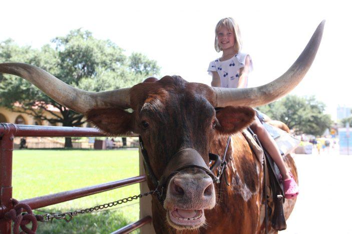 5 dollar för att få en bild när man sitter på en longhorn tyckte barnen det var värt