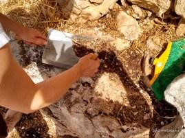 Helfende Hände bei der Ausgrabung Can Jordi