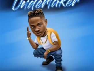 Download Undertaker By Lil Kesh
