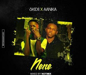 DOWNLOAD MP3: Skidii - Nene Ft. Aniika