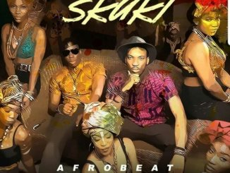 Skuki Pass The Agbara Remix mp3 download
