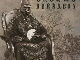 Download Burna Boy Odogwu video
