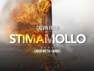 Calvin Fallo Stima Mollo Mp3 Download
