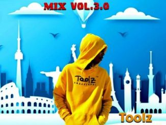 Toolz Umazelaphi Quarantine Mix 3.0 Mp3 Download