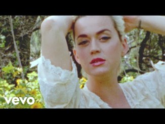 Katy Perry Daisies Mp3 Download