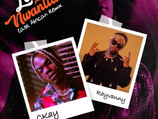 CKay ft. Rayvanny – Love Nwantiti (East African Remix)