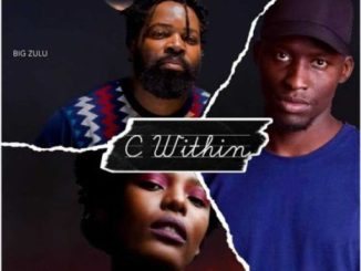 Prince Shadow C Within Mp3 Download