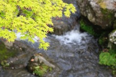 2langnasen_osaka_kyoto-13