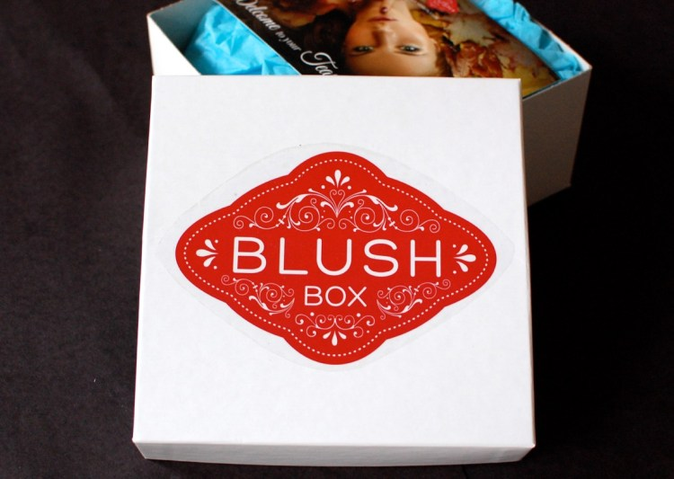BlushBox November 2014 Teaser Box Review & Cyber Monday Deals