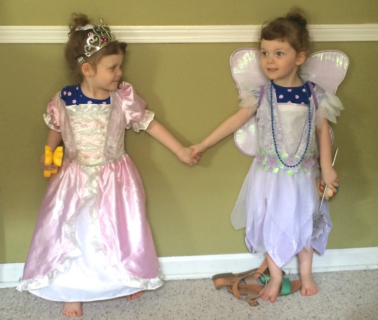 princess and fairy