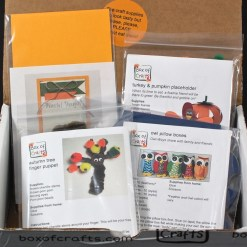 November 2015 Box of Crafts review
