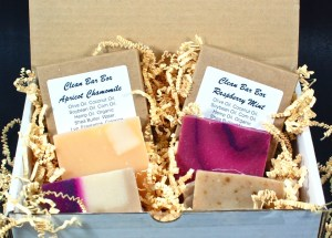 January 2016 Clean Bar Box review