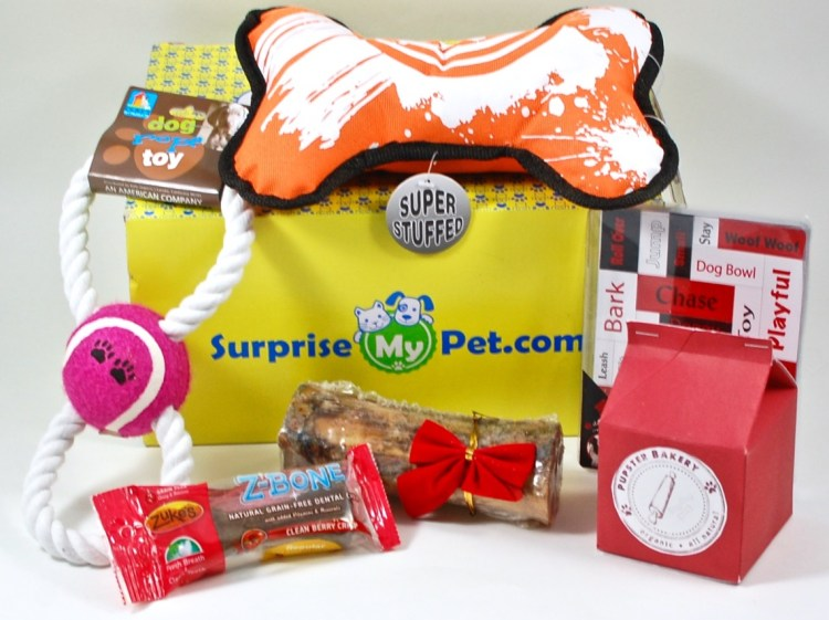 Surprise My Pet January 2016 Review & Coupon Code