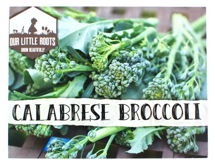 Our Little Roots broccoli