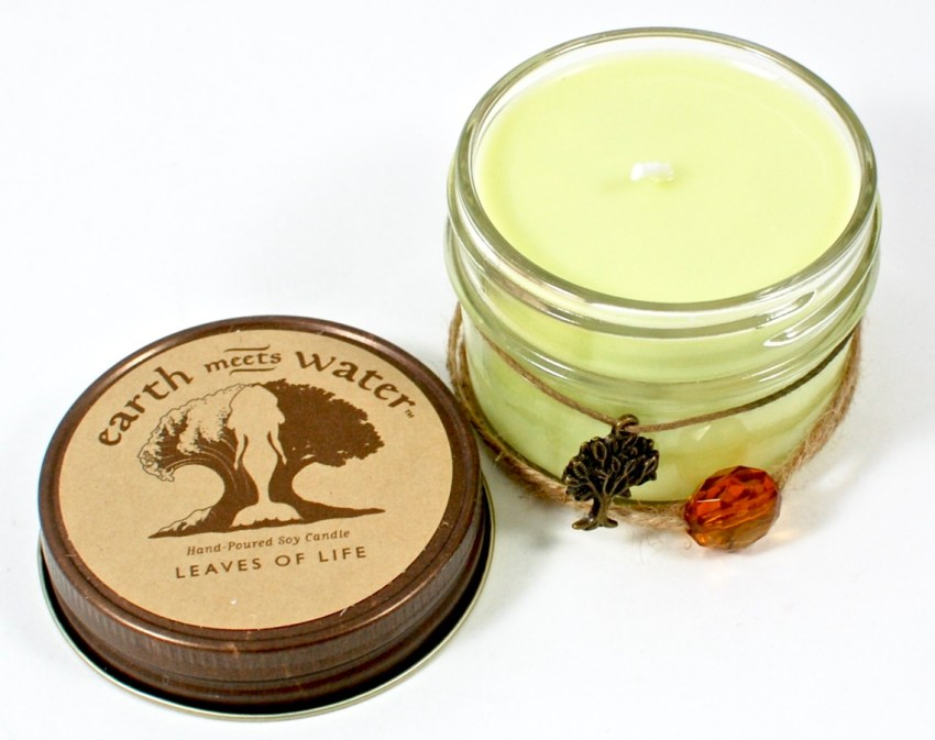 Earth Meets Water soy candle