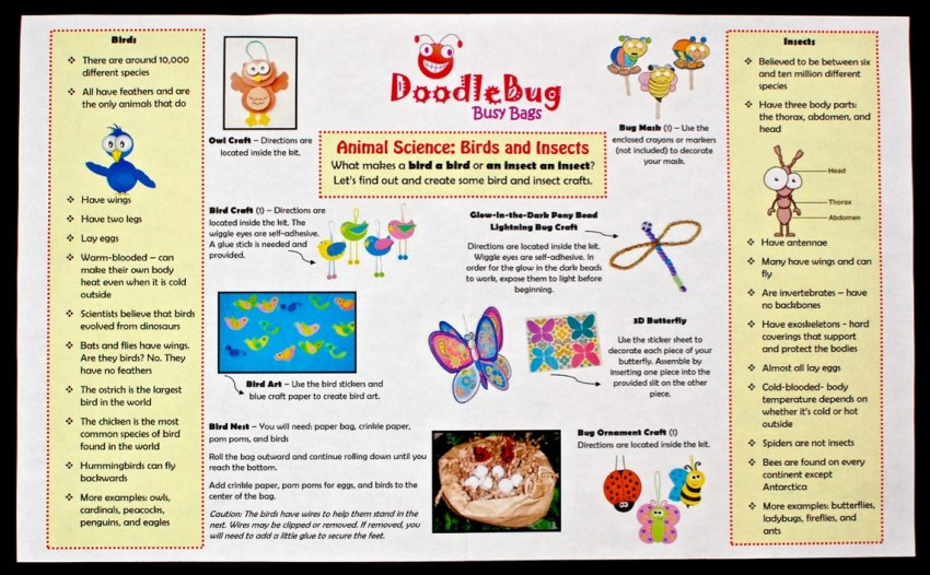 August 2016 Doodlebug Busy Bag