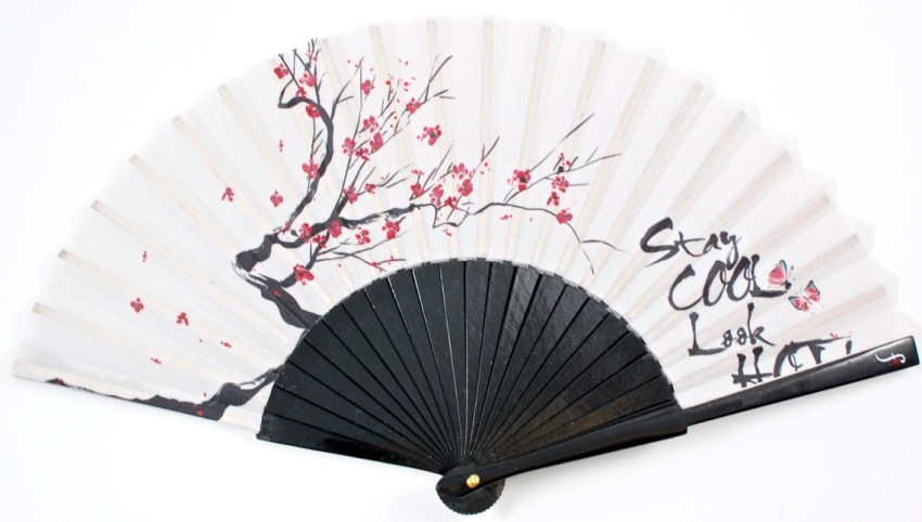 fancy zen fan