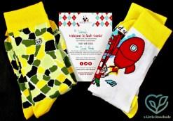 September 2016 Sock Panda review