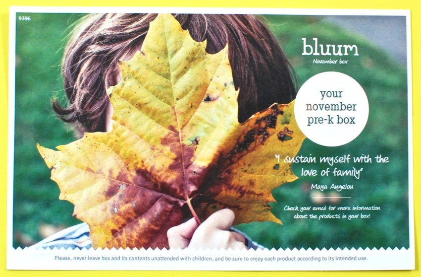 November 2016 bluum review