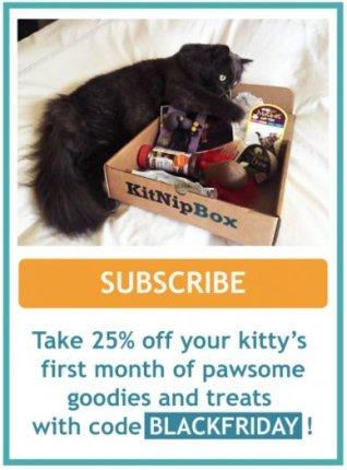 kitnipbox coupon