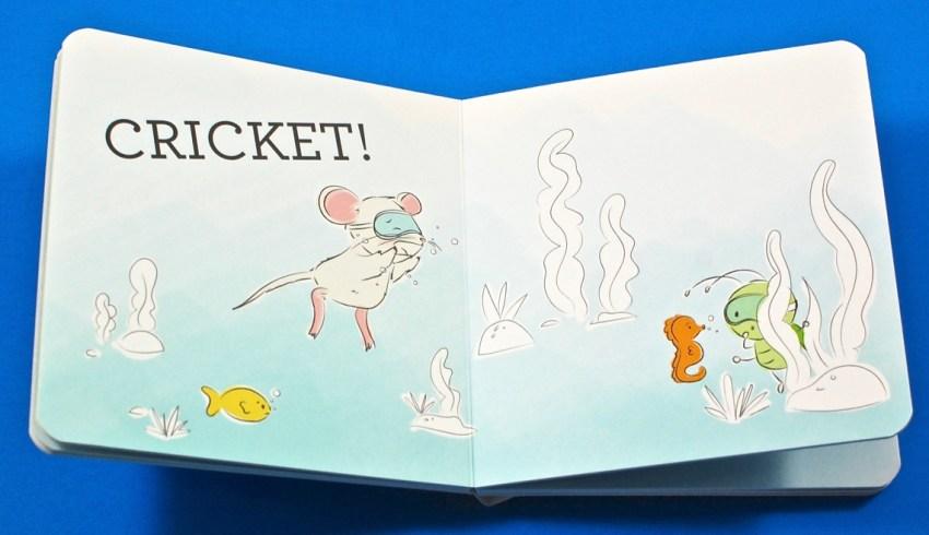 Cricket board book
