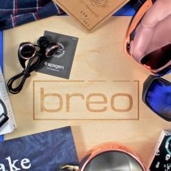 Winter 2016 Breo Box review