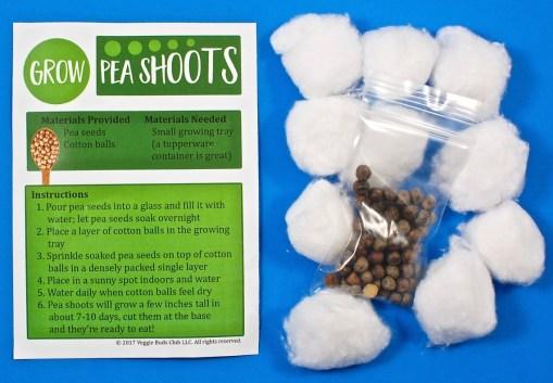 pea shoots activity