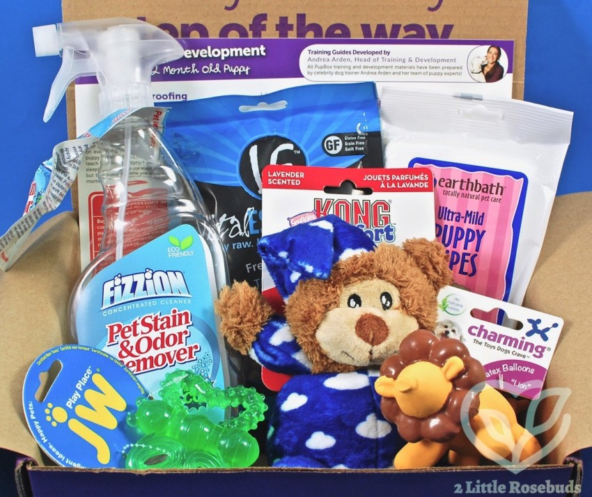 PupBox July 2017 Puppy Subscription Box Review