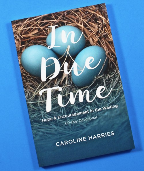 In Due Time book
