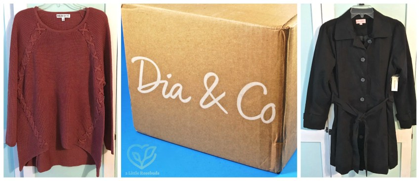 Dia & Co review