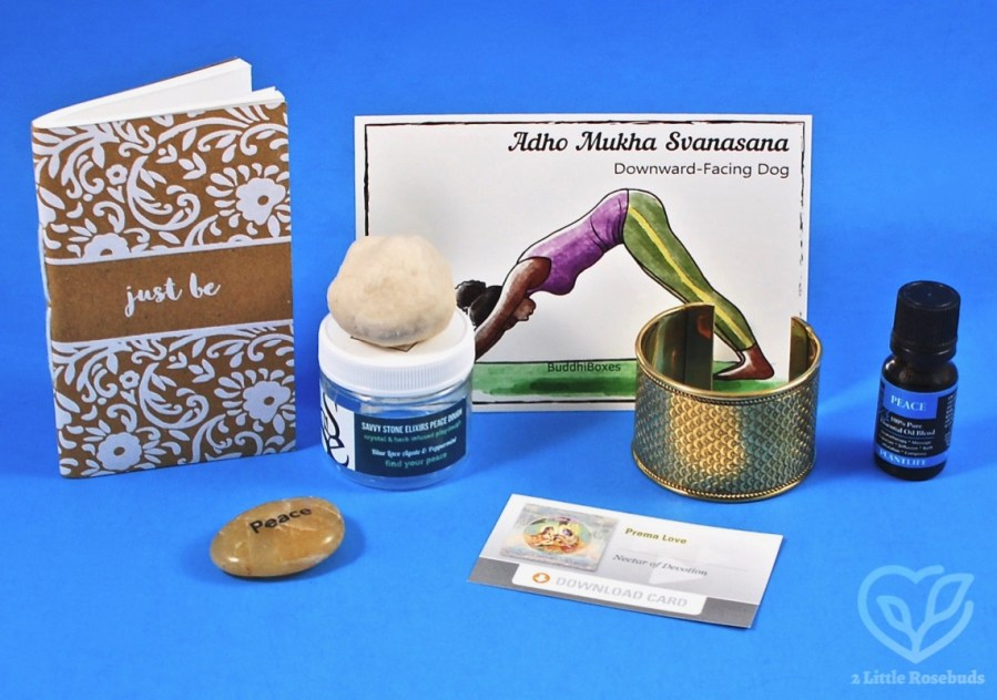 April 2019 BuddhiBox review