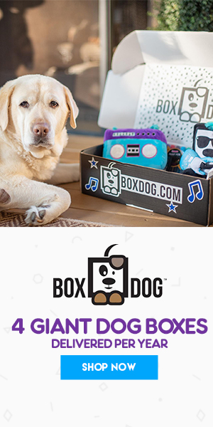 boxdog coupon