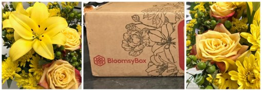 November 2020 BloomsyBox review