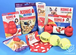 February 2021 KONG Box review