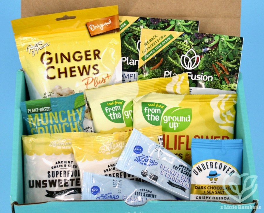 Fit Snack August 2021 box review