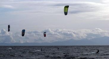 Kite boarders off Beacon Hill Park.