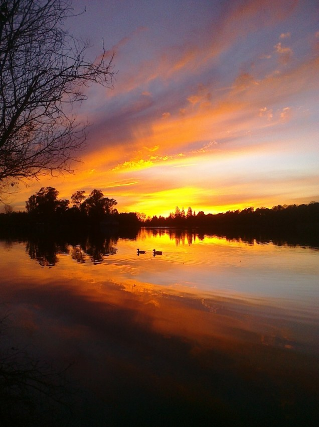 found on the phone - sunset over Lake Ralphine