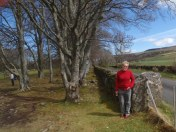 The fence might have been on the property border but the stone had to stay.