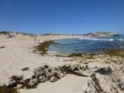 Admella Beach?