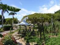 The Epicurian Garden