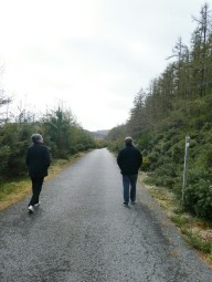 Walking along the forest road.
