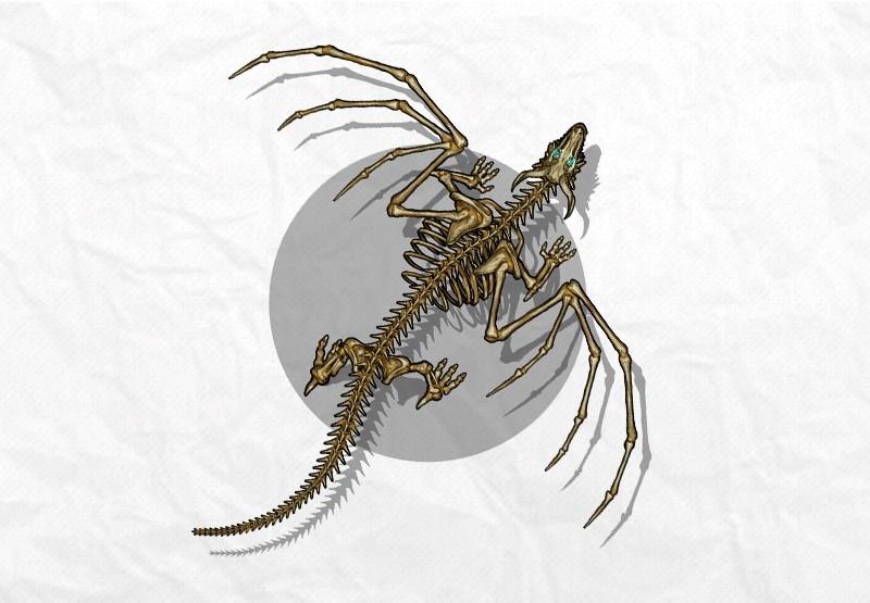 Token: Portal to Another World dragon token