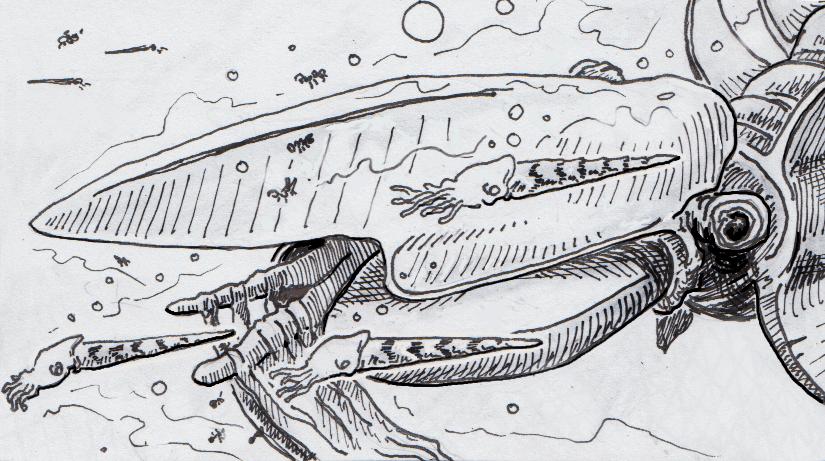 King of the Ordovician Seas