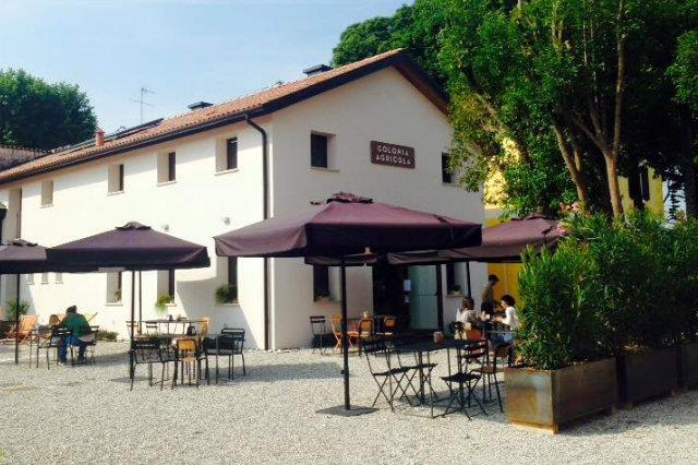 Mangiare vegetariano e vegano a Treviso e provincia ecco dove