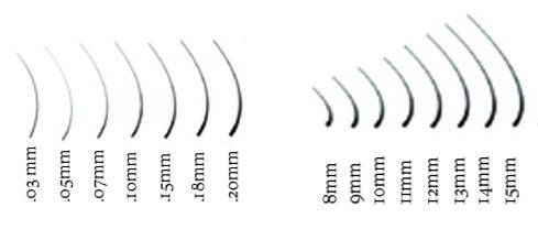 Eyelash Extension Size Chart: Guidelines for Curl